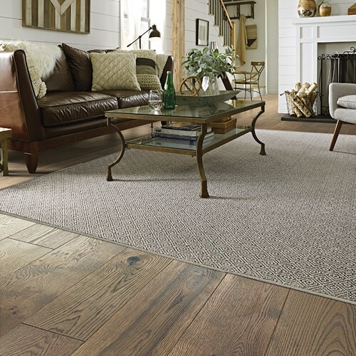 Carpet design in living room | Shans Carpets And Fine Flooring Inc