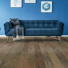 Blue sofa and blue colorwall | Shans Carpets And Fine Flooring Inc