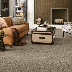Living room Carpet flooring | Shans Carpets And Fine Flooring Inc