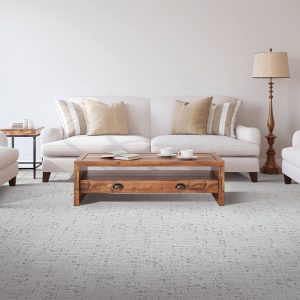 Living room Carpet | Shans Carpets And Fine Flooring Inc