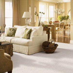 White Carpet in Living room | Shans Carpets And Fine Flooring Inc