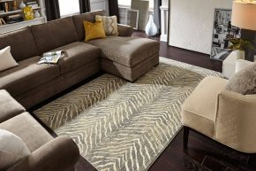 Modern living room | Shans Carpets And Fine Flooring Inc