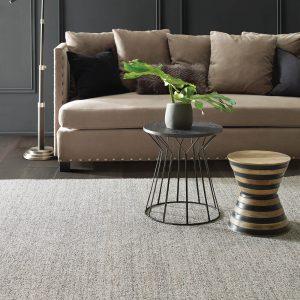 Living room grey Carpet | Shans Carpets And Fine Flooring Inc