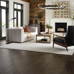 Living room interior | Shans Carpets And Fine Flooring Inc