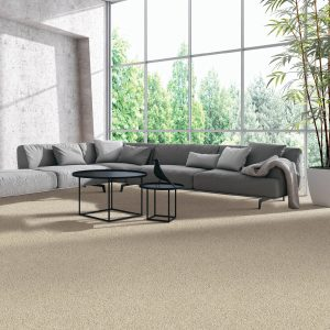 Beautiful view in living room from window | Shans Carpets And Fine Flooring Inc