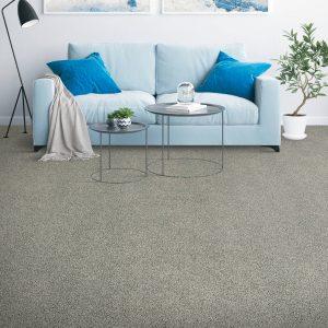 Dark grey Carpet | Shans Carpets And Fine Flooring Inc