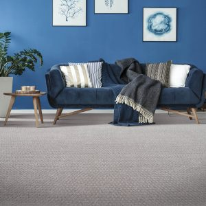 Blue colorwall | Shans Carpets And Fine Flooring Inc