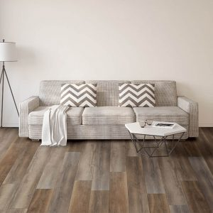 Sofa on Vinyl flooring | Shans Carpets And Fine Flooring Inc