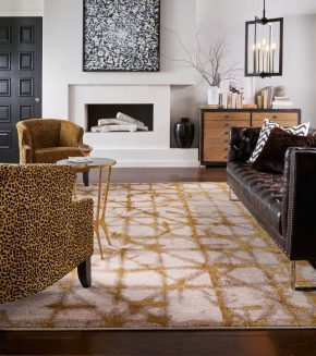 Area Rug | Shans Carpets And Fine Flooring Inc